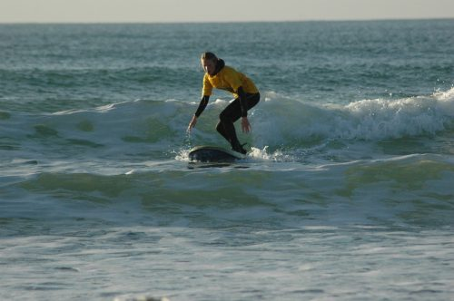 Surfing Courses
