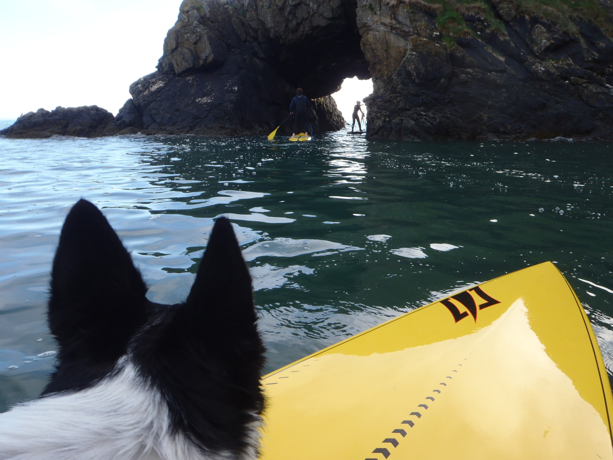 Pembrokeshire SUP Holidays 2